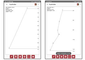 Face-Profiler-Interactive-Interface